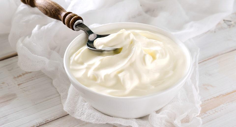 ferments pour les yaourts